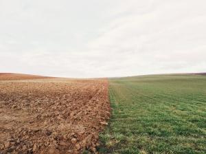 Dirt&Grass